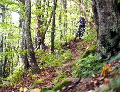 MTB guided tour in Goriška region from Sv. Gora and Škabrijel